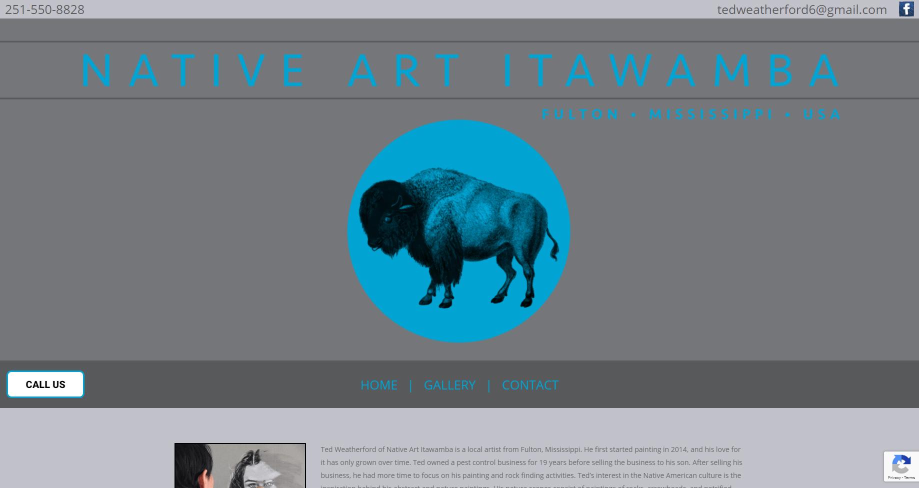 fine art website design - Native Art Itawamba